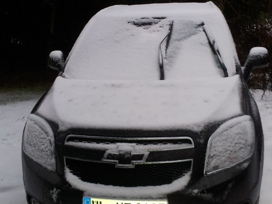 Orlis erster Winter